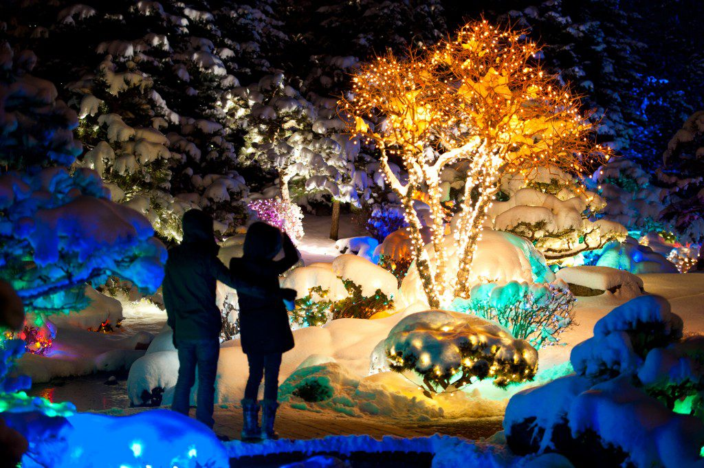 Blossoms of Light, Denver, Colo. Photo courtesy Denver Botanic Gardens.