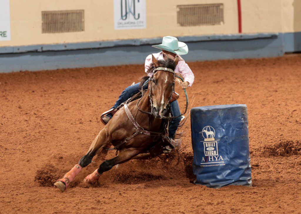 Photo courtesy aqha.com
