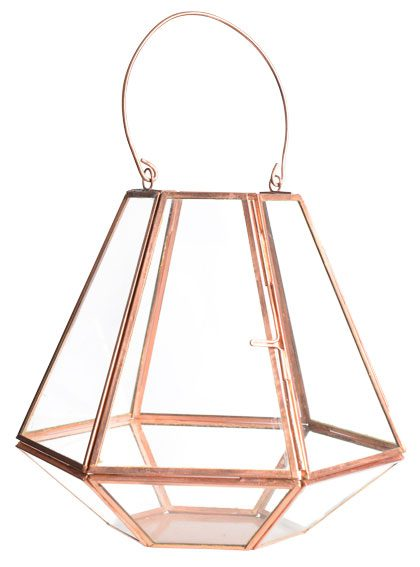 This lantern may look like decoration, but it can also house small succulents, like a mini greenhouse of sorts. $29.99