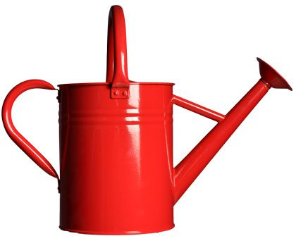 The watering can: A standard but necessary staple of every yard. $24.99